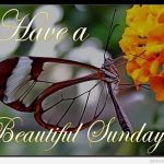 40 Lovely Sunday Wishes And Quotes For You